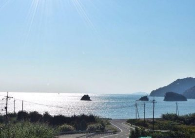 Shimanami Kaido Cycling Adventure