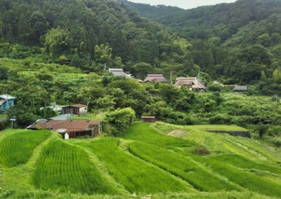 A remote valley from a tour of rural Shikoku