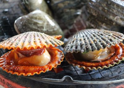 Clams on the Shimanami Kaido